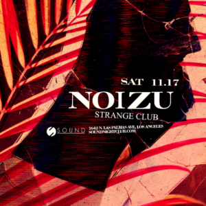 noizu strange club sound nightclub november 2018