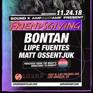 Friendsgiving Sound Nightclub Bontan Lupe Fuentes AMF sound nightclub 2018 november